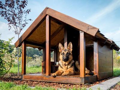 Plan niche chien 10 niches pour chien construire soi m me - Niche design pour chien ...