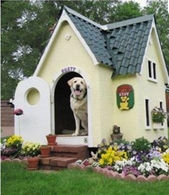 construire une niche pour chien