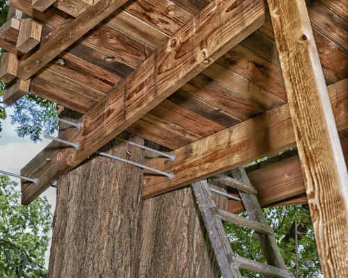 construire une cabane dans les arbres sans abimer l'arbre